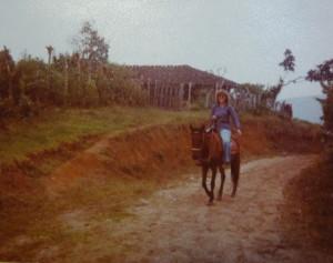 Das brave Pferdchen und ich
